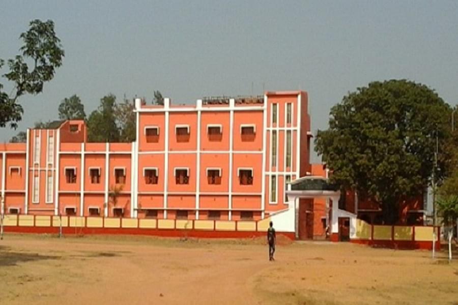 Jamini Roy College