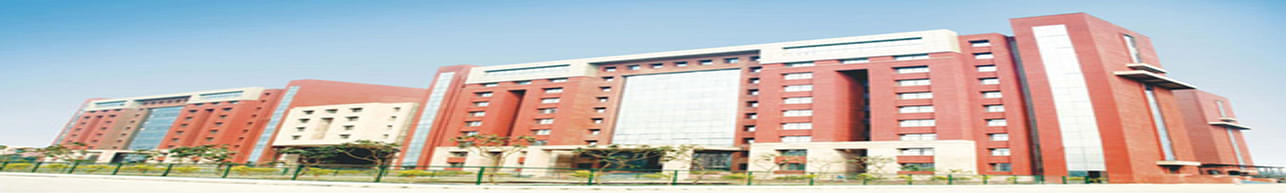 Amity Institute of Anthropology - [AIA], Noida
