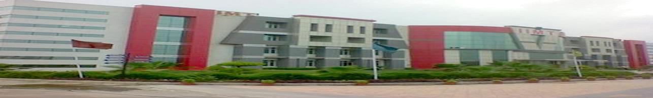 IIMT Group of Colleges, Greater Noida - Scholarship Details