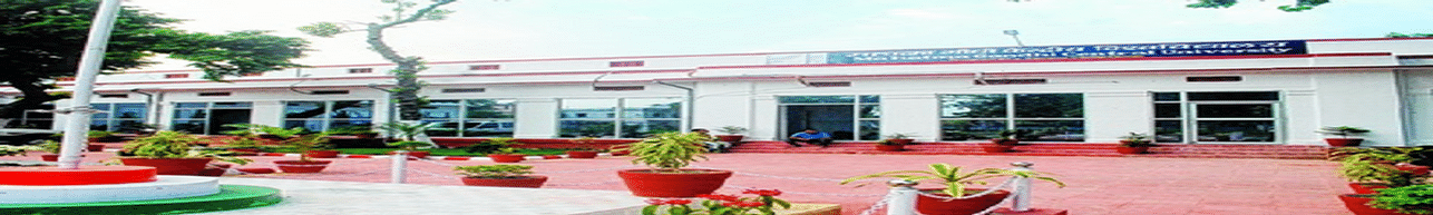 Mahatma Gandhi Central University - [MGCU], Motihari - List of Professors and Faculty