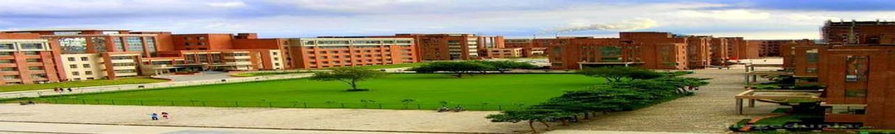 Amity College of Commerce & Finance - [ACCF], Noida