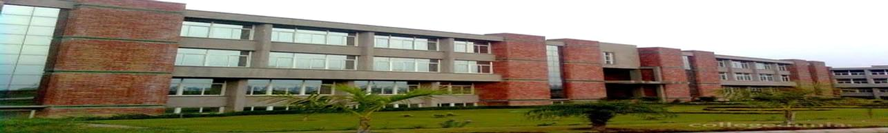 Vidya College of Engineering - [VCE], Meerut