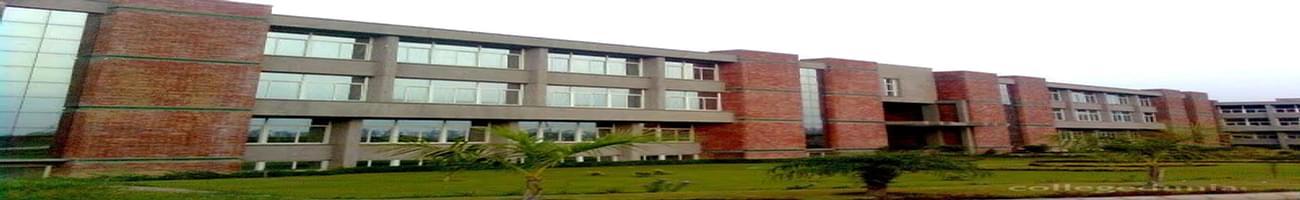 Vidya College of Engineering - [VCE], Meerut