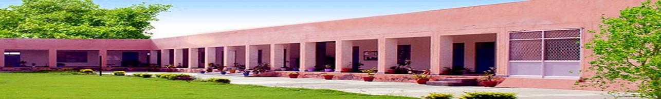 Triveni College of Education, Sirsa