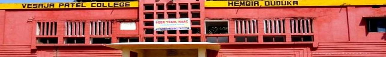 Vesaja Patel College, Sundergarh - Course & Fees Details