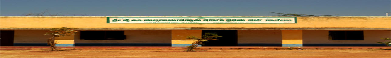 Y.M.Mallikarjunaswamy Government First Grade College, Chamarajnagar