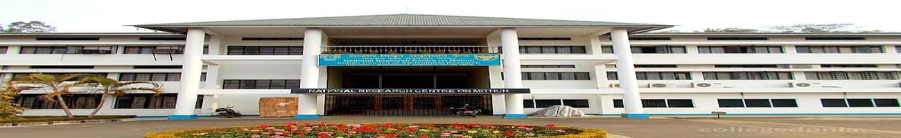 National Research Centre on Mithun - [NRCM], Dimapur