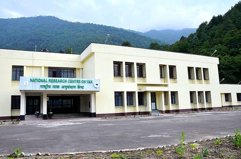 National Research Centre on Yak - [NRCY]
