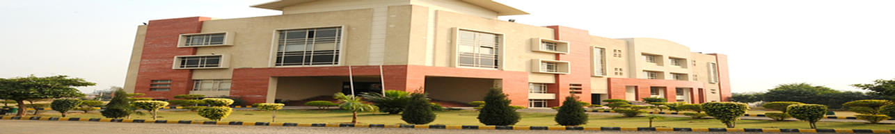 Innocent Hearts Group of Institutions, Jalandhar