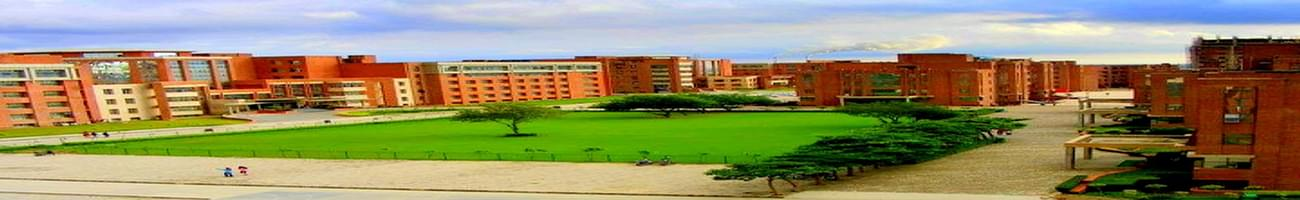 Amity Institute of Global Legal Education and Research, Noida