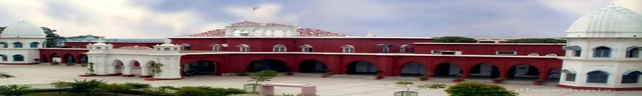 DAV College, Jalandhar - Course & Fees Details