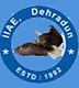 Indian Institute of Aeronautical Engineering - [IIAE], Dehradun logo
