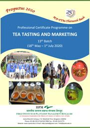 PCP-TTM Brochure