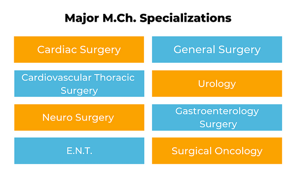 Major M.ch Specializations